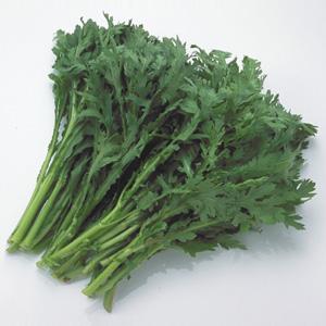 春菊:鍋に入れたい新鮮食材特集 ...